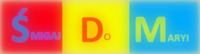 SDM-ROWER